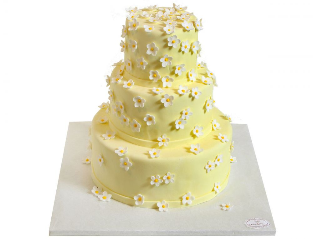 Gänseblümchen Torte
