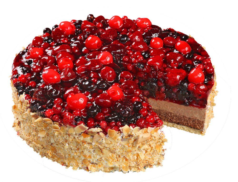 Standardtorte - Gemischtes Obst auf Schokoladensahne