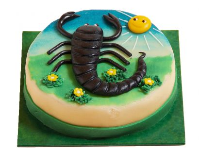 Skorpion (24.10. - 22.11.) Torte